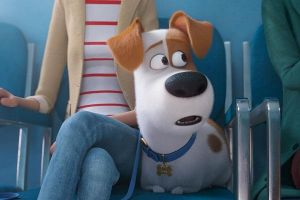 Pets 2, quinto trailer in italiano del film d'animazione della Illumination Entertainment