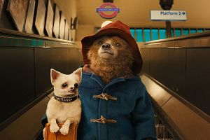 Paddington 2 uscita cinema: prima clip in italiano e backstage doppiaggio con Francesco Mandelli